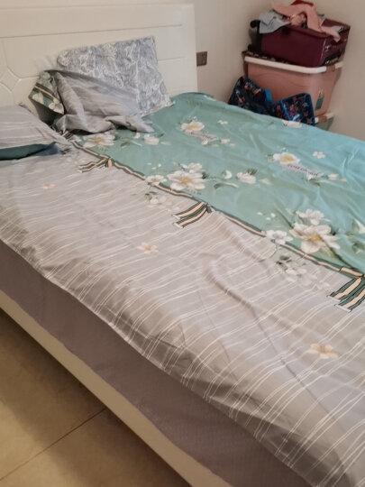 优雅100水洗棉四件套单双人ins风简约网红床单被套枕套学生宿舍1.2/1.5/1.8米床上用品 圆点生活 1.2米床/三件套(被套150*200) 晒单图