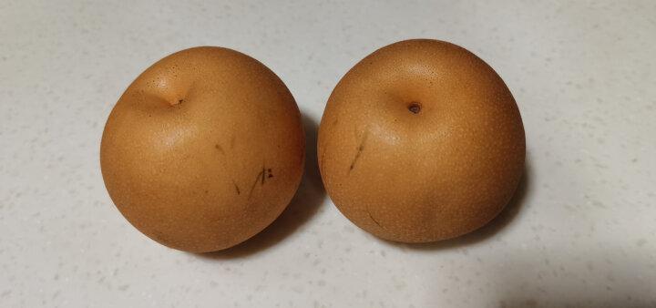 长城果品 绿冠梨 净重5斤 梨子  新鲜水果 晒单图