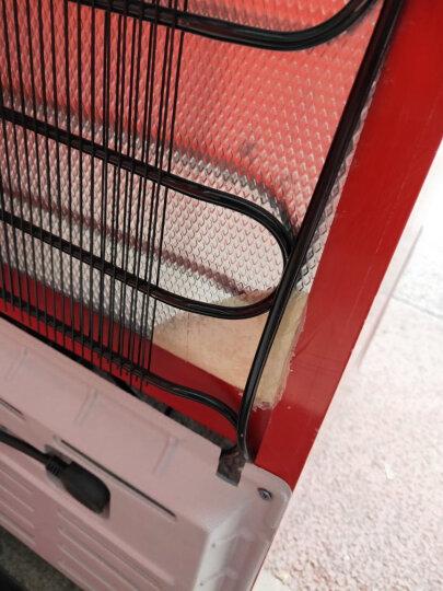 乐创(lecon) 啤酒展示柜冷藏立式冰柜商用冰箱饮料饮品保鲜单门双门三门冷柜水果鲜花点菜 红黑色双门 直冷 晒单图