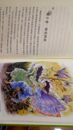卓娅和舒拉的故事(插图版 全译本)/译林名著精选 晒单图