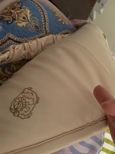 多喜爱(Dohia)床垫/床褥 澳洲羊毛抗菌床褥子垫被 四季软垫 双人床上用品 凯恩 1.8米床 180*200cm 晒单图