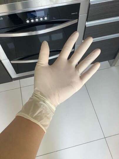 爱马斯AMMEX一次性乳胶手套家务清洁洗碗牙科美容实验科研医务检查橡胶手套TLFCMDI耐用型100只 乳白色中号M 晒单图