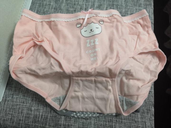 南极人(Nanjiren)喵咪可爱印花女士内裤女棉质纯色中低腰女式三角内裤4条礼盒装 M 晒单图