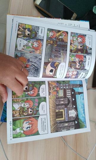 双螺旋童书:冒险岛数学奇遇记11-15 晒单图