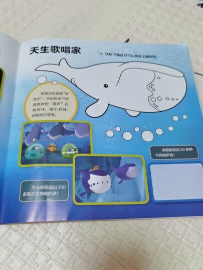 海底小纵队思维大挑战(套装 全4册) 晒单图