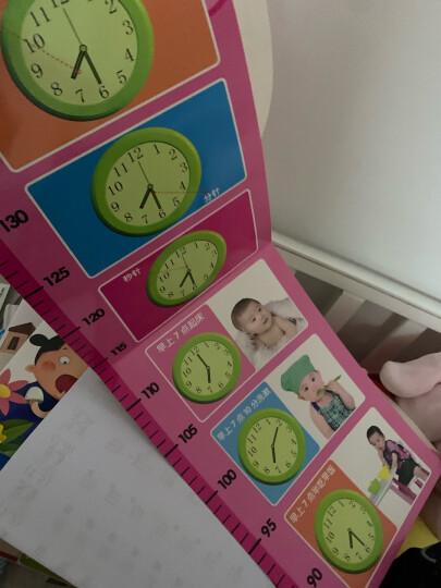 身高尺学习挂图:识车 儿童房身高尺 宝宝卧室卡通动物测量身高挂图 晒单图