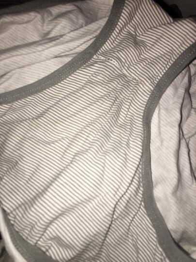 浪莎女士内裤纯棉中腰无痕蕾丝大码女生三角裤礼盒7条装少女性感 1573唯你 7色7条装 170/95 (XL)  120-140斤 晒单图