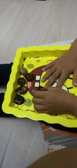 菇滋菇滋(guziguzi) 香菇脆 即食香菇干 果蔬脆片 蔬菜干 孕妇儿童健康零食 蘑菇干小吃特产 原味5盒特惠装 晒单图