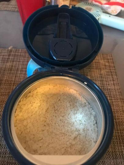 嘉宝(Gerber)婴儿辅食 钙铁锌营养麦粉 宝宝麦粉250g(辅食添加初期) 晒单图