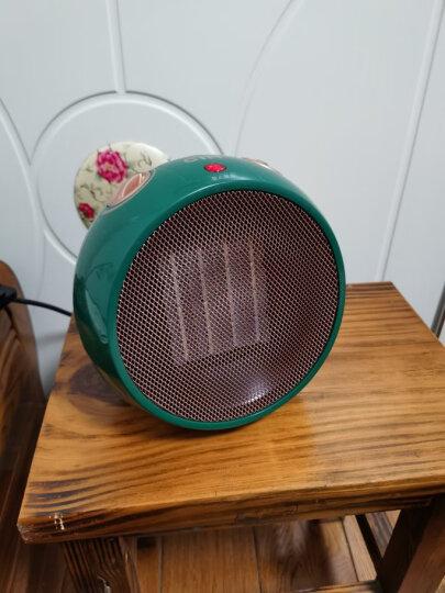 CIH 迷你暖风机取暖器家用小型小太阳浴室电暖器办公室电暖气节能速热暖气机 PTH1001球型珍珠白 晒单图