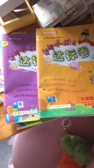 黄冈小状元达标卷三年级上语文数学英语pep 人教版3本3年级上册试卷单元期中期末测试卷 晒单图