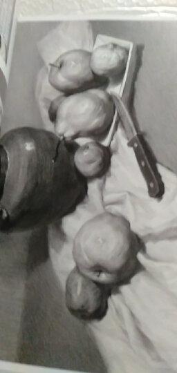 《经典素描静物》铅笔美术绘画书籍杨建飞联考线描技法结构诀窍照片临摹临本从自学到精通画画初学 晒单图