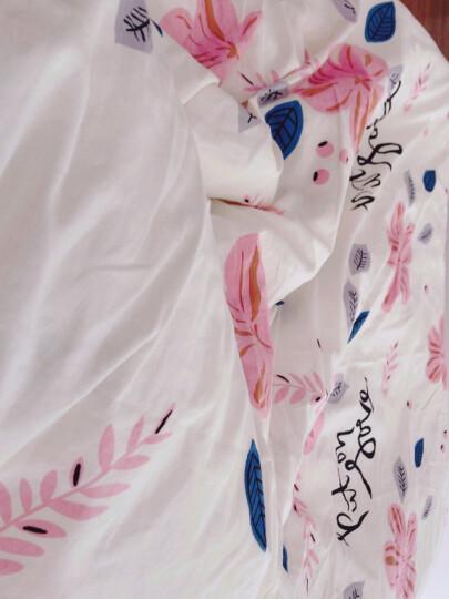 兰序家纺秋冬加厚磨毛床上四件套纯棉全棉床单床笠被套床上用品套件1.5米1.8 甜果季 1.5-1.8床床单款200*230被套(四件套) 晒单图