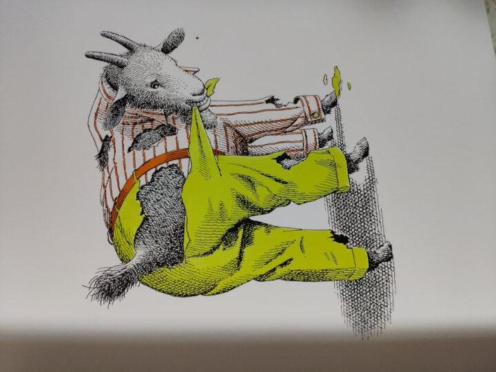动物绝对不应该穿衣服 海豚绘本花园平装 儿童绘本3-6岁经典畅销图书 晒单图