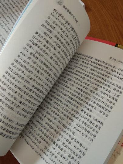 八十天环游地球(彩插励志版 无障碍阅读)/新课标必读名著,智慧熊图书 晒单图