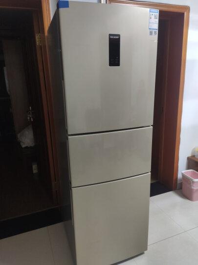 美菱(MELING)271升 三门冰箱 一级能效 -32度速冻双变频 净味养鲜 宽幅变温 BCD-271WP3CX 晒单图