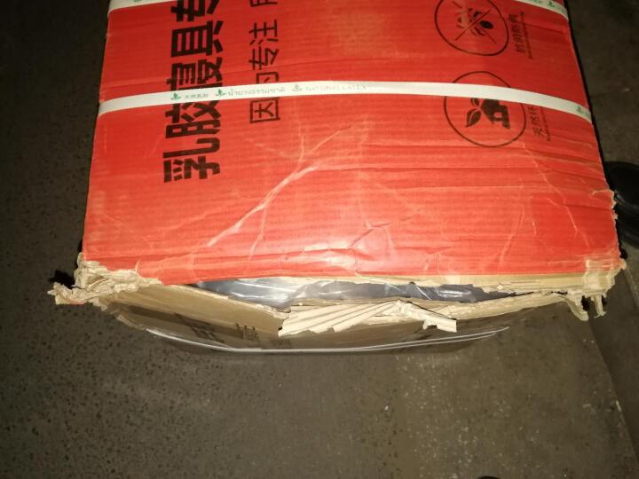 清幽雅竹 泰国进口乳胶床垫天然竹炭5cm10cm 可定制做1.5米1.8米 可折叠薄床垫 15cm厚 150cm*190cm 晒单图