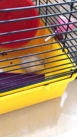 pawise 仓鼠浴室 小宠用品 白鼠金丝熊洗澡用 清洁除味 晒单图