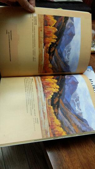西方经典美术技法译丛:油画的色彩造型画法 晒单图