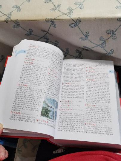成语大词典 双色最新修订版 小学生多功能成语词典 2020年新版中小学生专用辞书工具书字典词典 晒单图