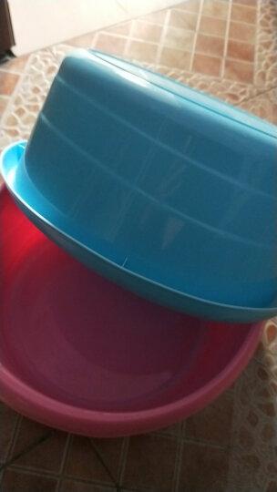 【特深洗衣盆】茶花塑料洗衣盆大号儿童洗浴盆加厚洗脚盆 小号绿色 晒单图