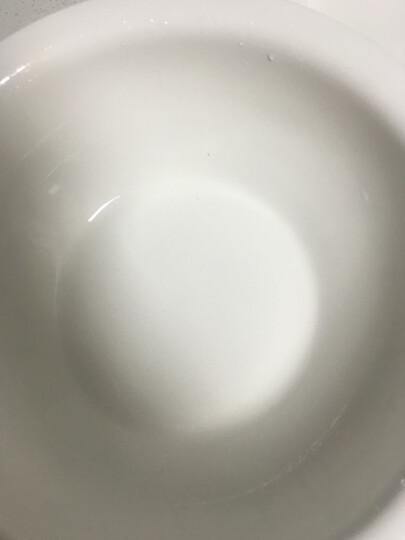 丝贝美瓷(seabird) 纯白酒店陶瓷餐具大汤古光口酸菜鱼盆子大号面碗饭店大汤盆大汤碗 11英寸大汤古 晒单图
