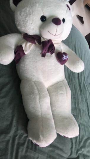爱尚熊泰迪熊猫抱枕公仔毛绒玩具布娃娃女孩抱枕大号抱抱狗熊玩偶公仔生日礼物女可定制照片80cm 晒单图
