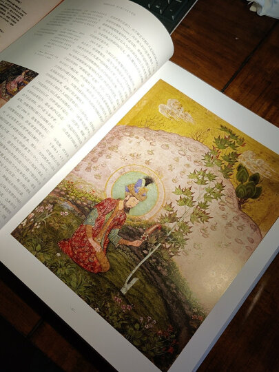 秘密花园+魔法森林(套装全2册) 晒单图
