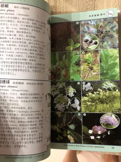 中国常见植物野外识别手册 晒单图