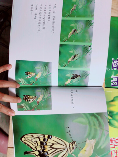 耕林科普:亲亲自然11册(培养孩子观察细节能力 ,拥抱大自然) 晒单图