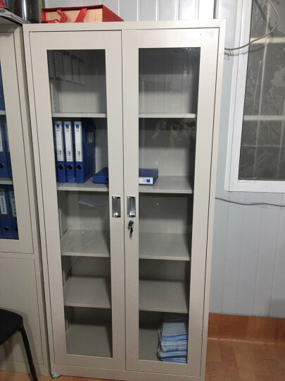 佰佑 文件柜办公柜铁皮柜资料柜档案柜带锁财务柜工具柜器械柜子玻璃柜 双节矮柜 晒单图