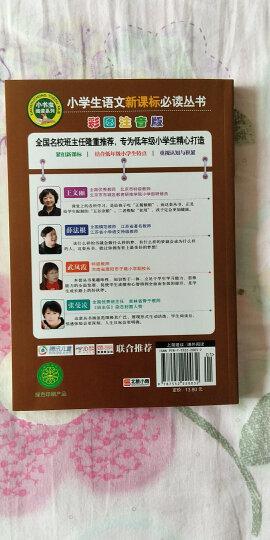 宝葫芦的秘密(彩图注音版)/小学生语文新课标必读丛书 晒单图