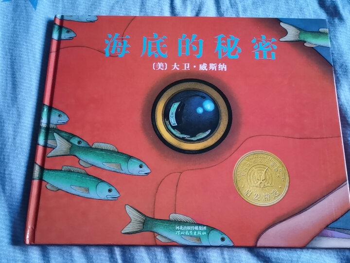 警官巴克尔和警犬葛芮雅  凯迪克金奖绘本 经典畅销绘本3-6岁(启发出品) 晒单图