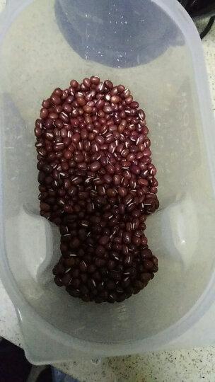黑土优选 精选杂粮 豆浆豆原料 红豆莲子80g(黄豆 燕麦 红小豆 红花生 莲子) 晒单图