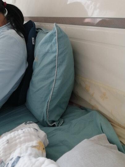 【团购推荐】佳奥 记忆棉腰靠办公室椅子靠枕护腰座椅靠垫孕妇腰垫靠背汽车腰枕 温感护脊款 藏青 晒单图