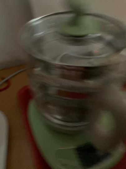 小熊(Bear)养生壶 热水壶 煮茶器 煮茶壶 电水壶 恒温电热水壶 保温花茶壶 YSH-B18T1带滤网1.5L 烧水壶 晒单图