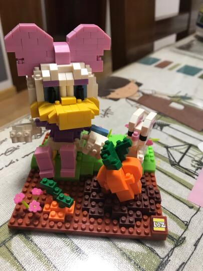 LOZ 俐智积木卡通玩具迷你拼插装 儿童益智6-8岁男女孩玩具 迪士尼米奇唐老鸭拼搭积木 9637-唐纳德触礁之旅 晒单图