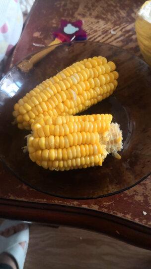 密园小农 应季甜玉米  水果玉米 约2.5kg 晒单图