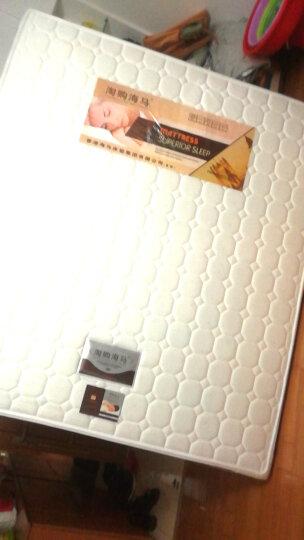 淘购海马床垫 香港海马床垫进口乳胶床垫 双人席梦思弹簧床垫  椰棕床垫硬棕垫 软硬两用可拆洗 E款 针织面料+九区独立袋弹簧+椰棕+乳胶 1800*2000 晒单图