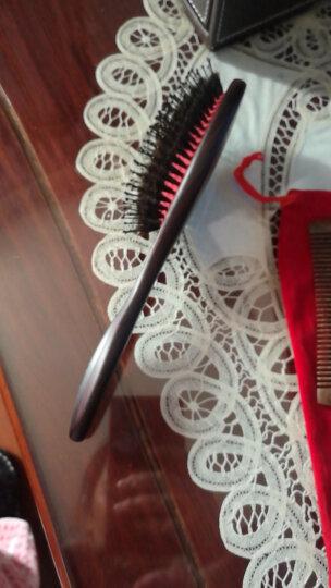 紫韵梳香专业美发直发造型猪鬃毛按摩气囊梳生日礼物送女生 J-4 晒单图