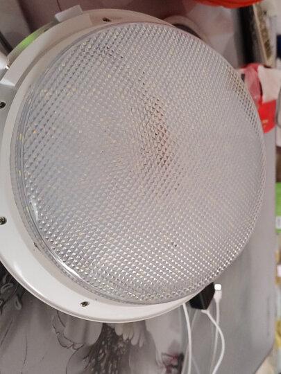 东之胜充电灯 夜市摆摊移动户外灯泡超亮家用停电应急 LED充电式无线挂灯照明应急灯露营便携式电灯吊灯 20W白光+USB接口+照明 6-10小时 晒单图
