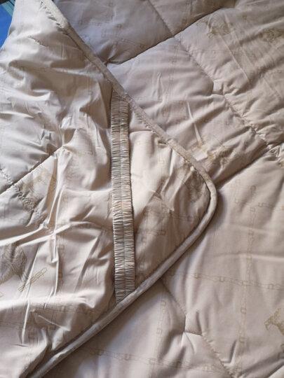 博洋家纺 澳毛床垫床褥 四季秋冬双人加大加厚榻榻米软垫子 1.8米可折叠洛斯羊毛褥子180*200cm 晒单图