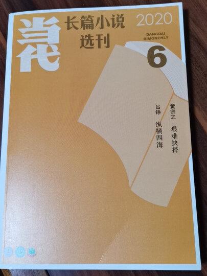 【全年珍藏】当代长篇小说选刊杂志2020年1/2/3/4/5/6期共6本打包双月刊现代文学过期刊 晒单图