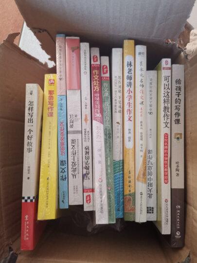 大夏书系·作文教学 作文课,我们有办法:4位初中语文名师的作文教学智慧 晒单图