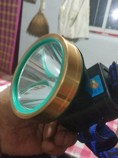 E-smarter强光9900W头灯远射充电超长续航亮防水头戴式LED夜钓手电筒大功率矿灯户外钓鱼灯 蓝光ABS超亮9900W 20小时超长续航 晒单图