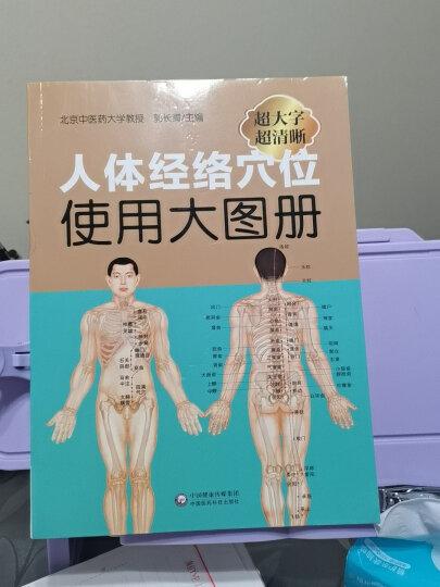 人体经络穴位标准大图册 晒单图