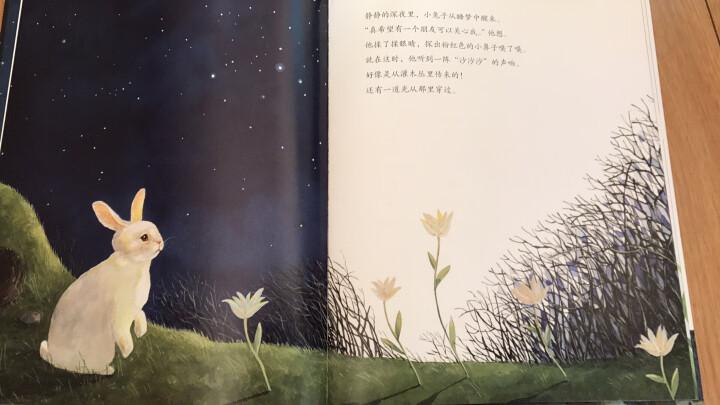 遇见美好系列(第2辑):当月亮落下来 晒单图