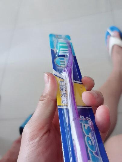 佳洁士(Crest) 牙刷软毛超细柔韧黑茶深洁成人牙刷两支优惠装(新老包装,随机发货) 晒单图