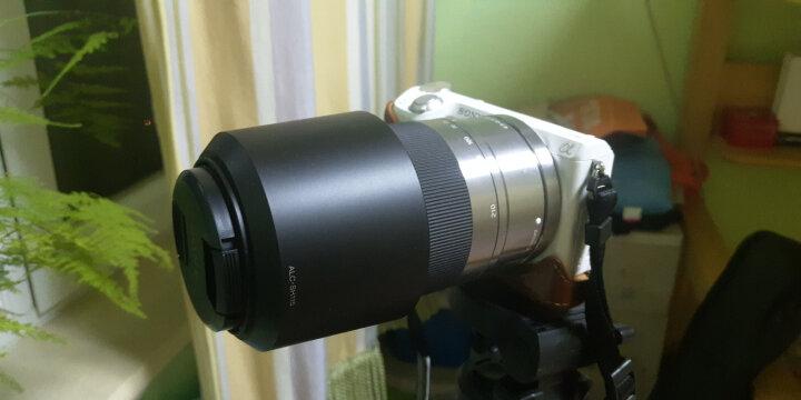 索尼(SONY)APS-C画幅微单E口变焦镜头 A6300 A6000 A6500镜头 E18-105mmF4 G 电动变焦 晒单图