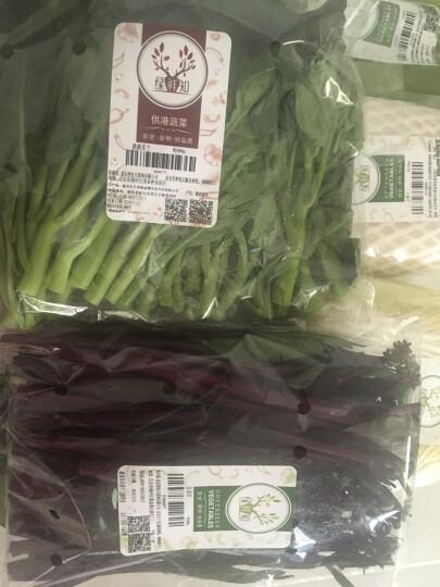 绿鲜知 新鲜冬笋 非春笋 竹笋 500-600g 火锅食材 新鲜蔬菜 晒单图